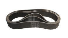 Triger Belt (Top)